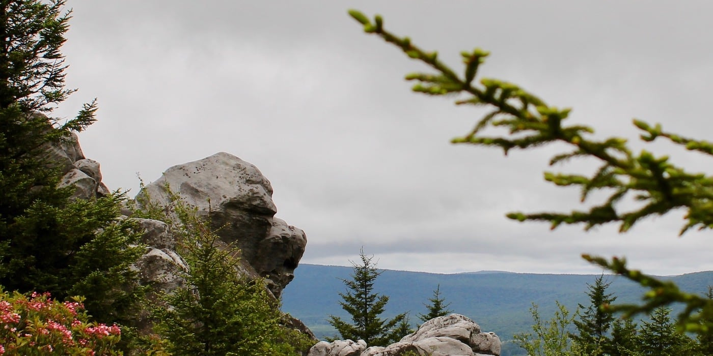 Backpacking Dolly Sods Wilderness