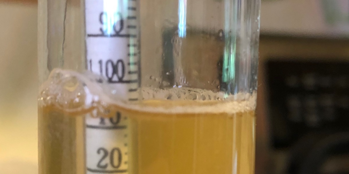 A reading of 1.105 (eleven-o-five) might seem like a high gravity to non-mead-makers